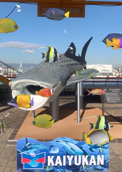 海遊館ジンベエザメAR画面